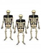Gruselige Skelette Halloween Wanddeko-Boxen 3er-Set schwarz-beige 5,1x15,9cm