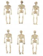 Kleine Skelette Halloween-Partydeko 6 Stück 15cm