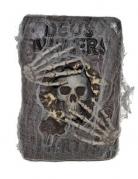 Altes Zauberbuch mit Totenkopf und Spinnenweben grau