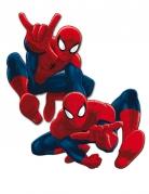 Spider-Man™ Wanddekorationen 2 Stück rot-blau 30 cm