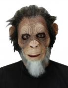 Alter Affe-Maske für Erwachsene Halloweenmaske braun