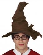 Alter Zaubererhut für Erwachsene braun