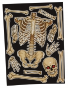 Skelett-Fenstersticker Partydeko Halloween beige 30x40 cm