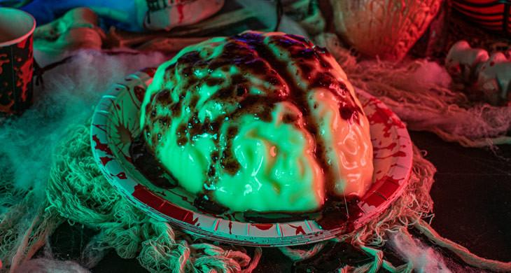 Halloween-Dessert: Gehirn-Pudding für echte Zombies