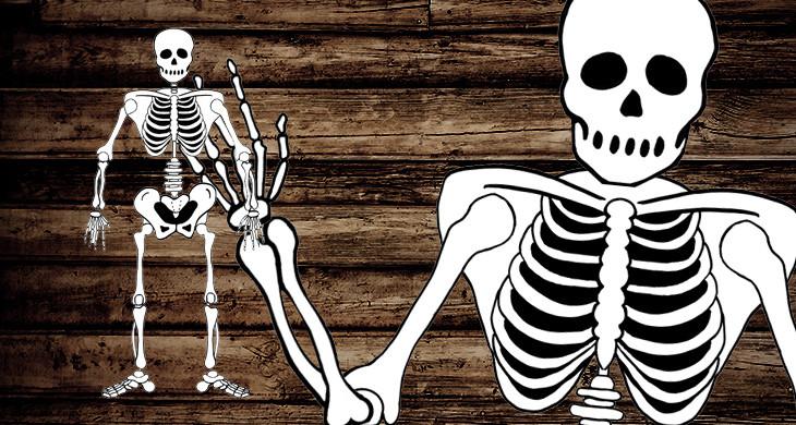 Halloween-Skelett zum selber basteln